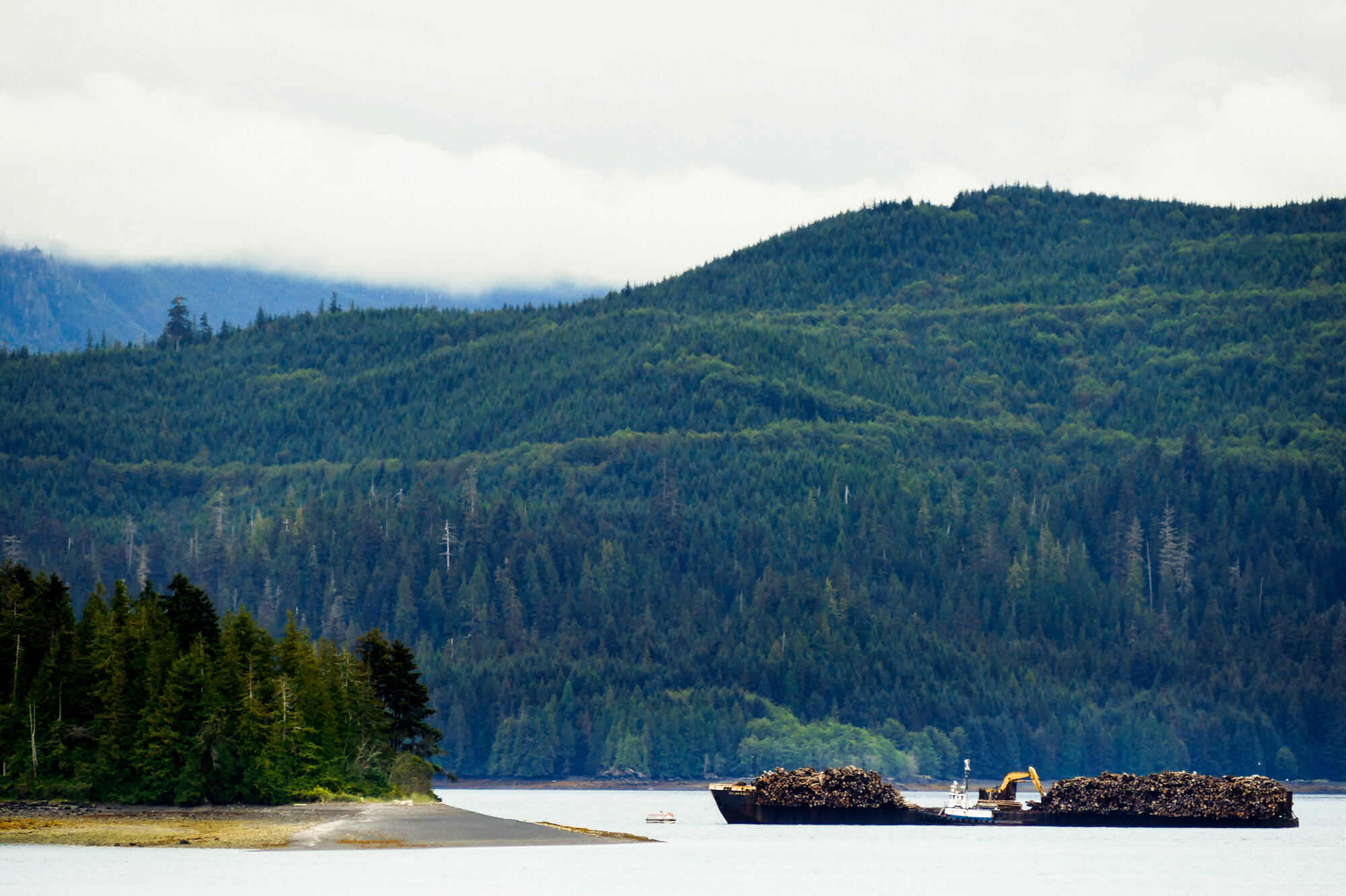 A glimpse of the less-than-sustainable forestry that also happens on Haida Gwaii.