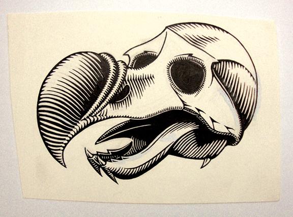 Dodo Skull / ink on paper / 1991 / sold