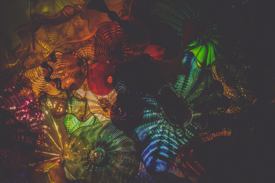 Chihuly GLass {June 2016}-0193 low.jpg