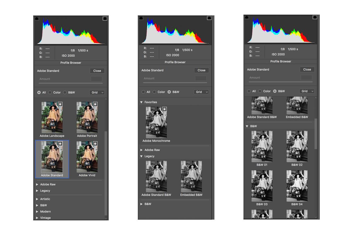 The new Monochrome Profiles in Adobe Camera Raw Update 10.3