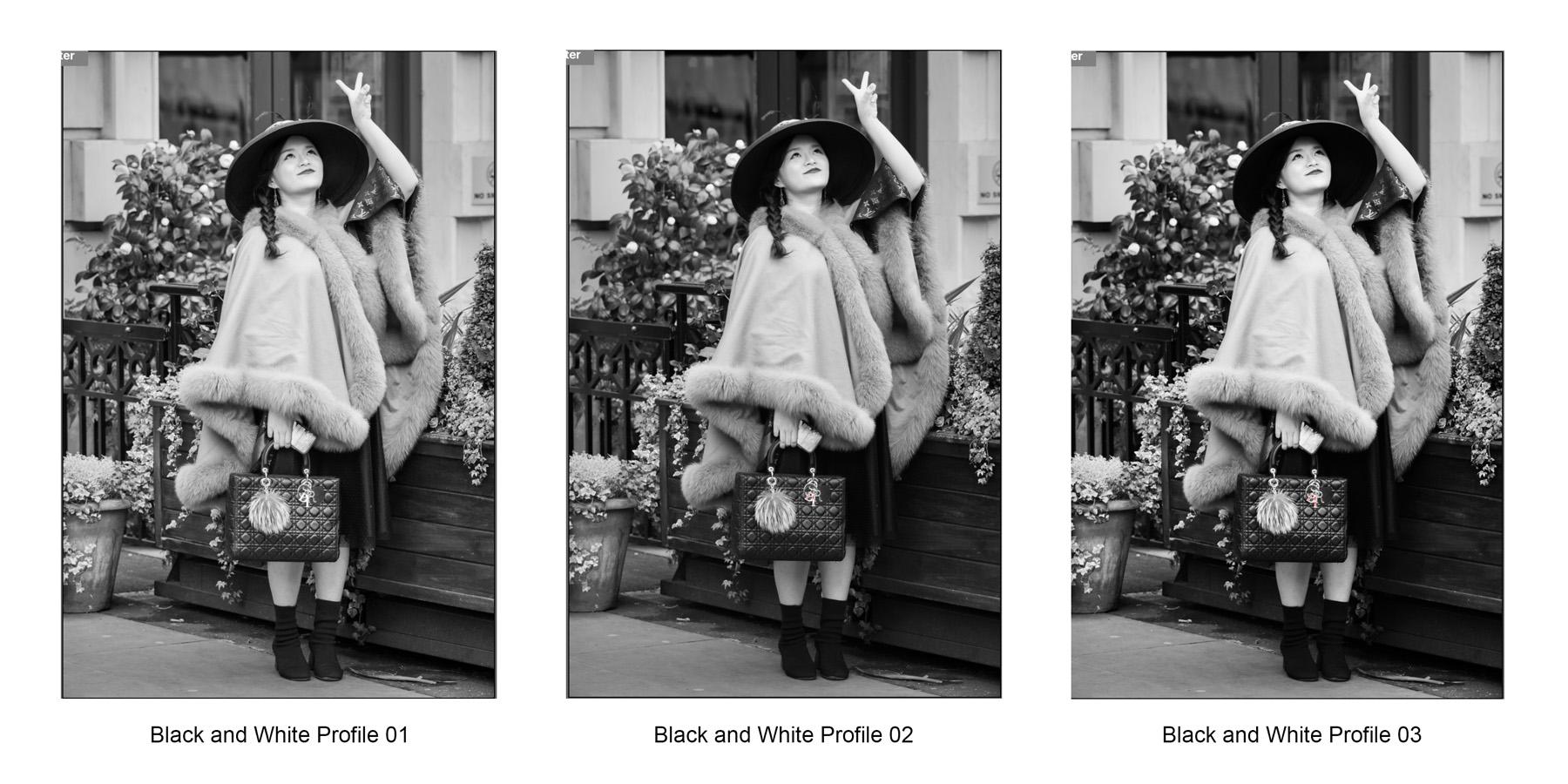 Adobe Camera Raw Monochrome Profiles 1-3