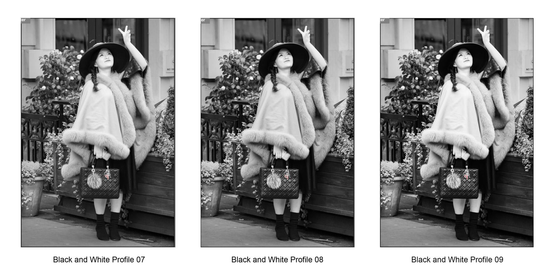 Adobe Camera Raw Monochrome Profiles 7-9