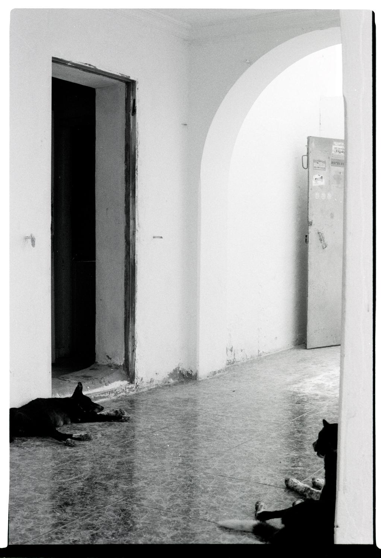 Christoph Montebelli Courrier Sud-7.jpg