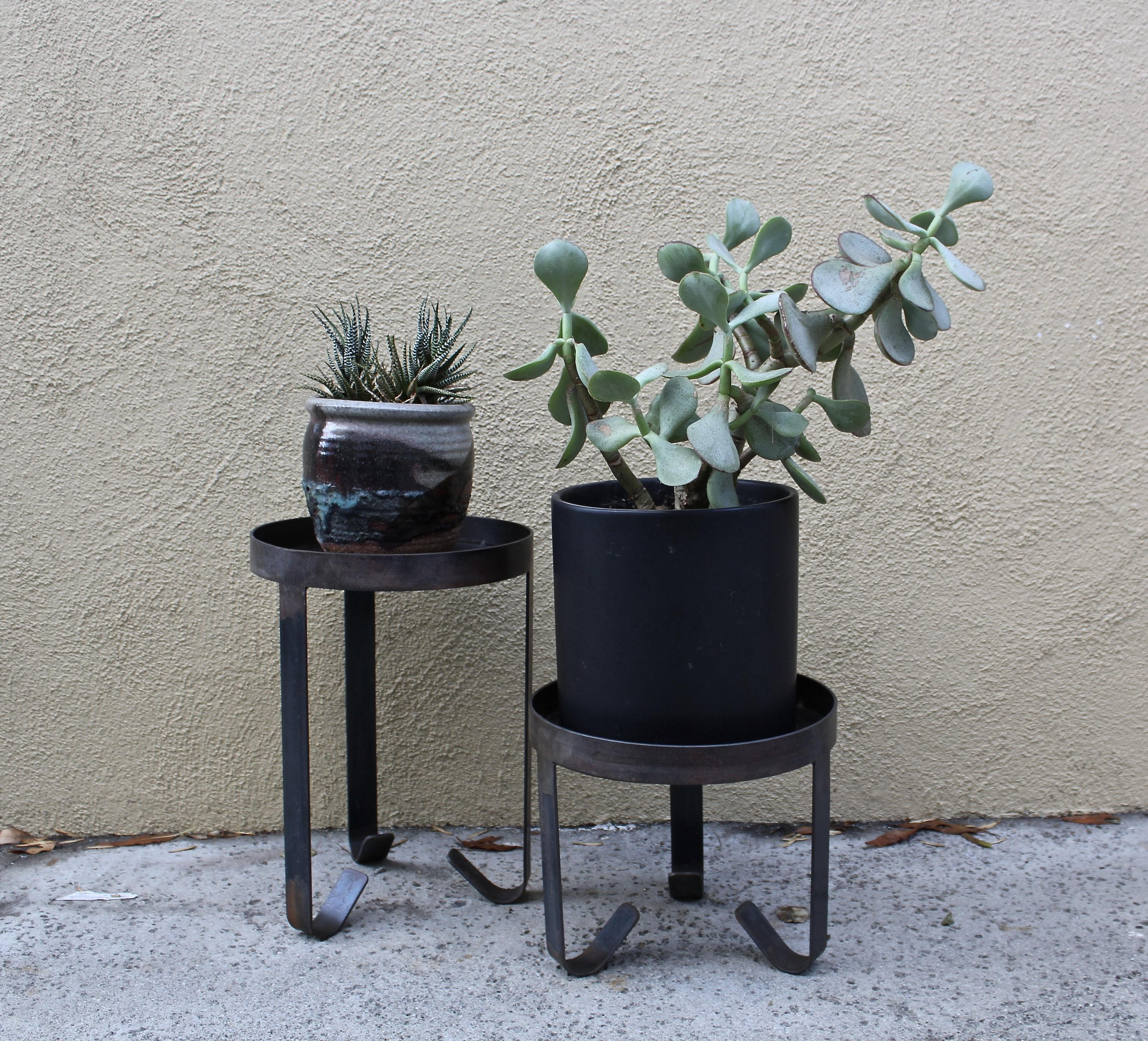Plants Stands
