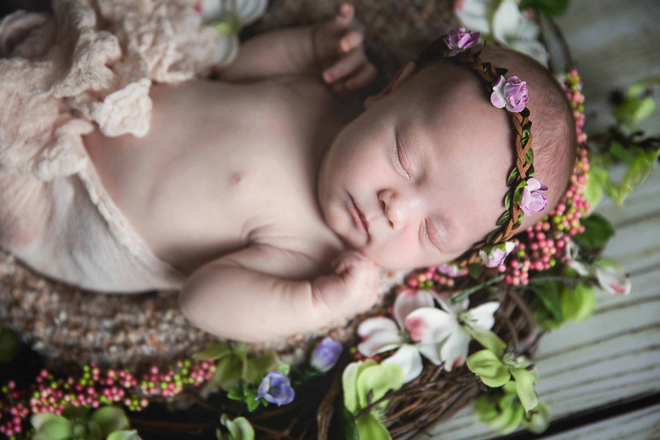 Baby-Monroe-26.jpg