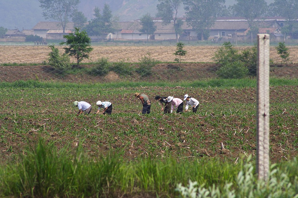North_Korean_farmers.jpg