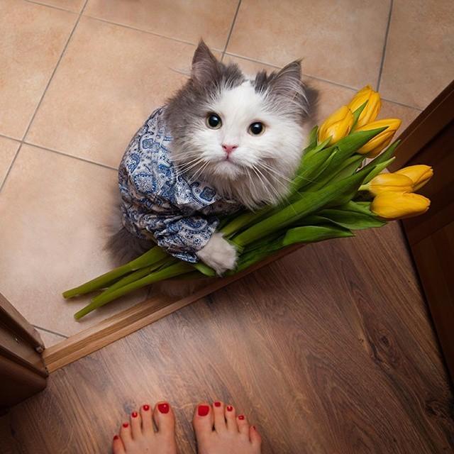 kosmik-kiko :   Are you ready for our date?