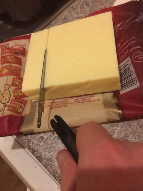 adhoption :      river-b :      motherfuckinoedipus :      abnels :      memeguy-com :     You win this round cheese     actually that is a rectangle cheese     [oxford comma laughing in the distance]     [vocative comma wondering what oxford comma thinks it's doing here]     I already reblogged this for the pun but I'm reblogging again for the sick punctuation banter