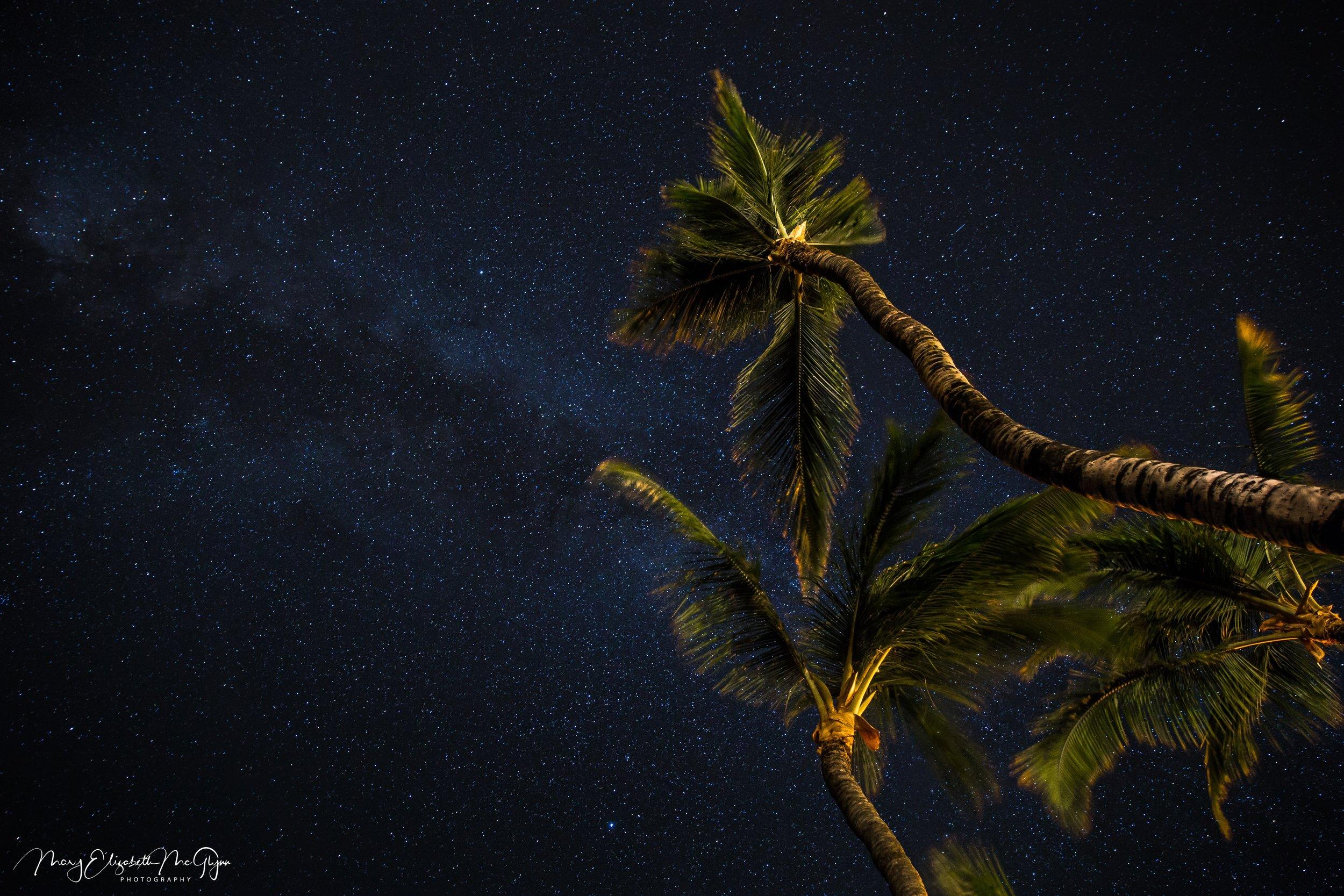 Mauna Lani Palms.jpg
