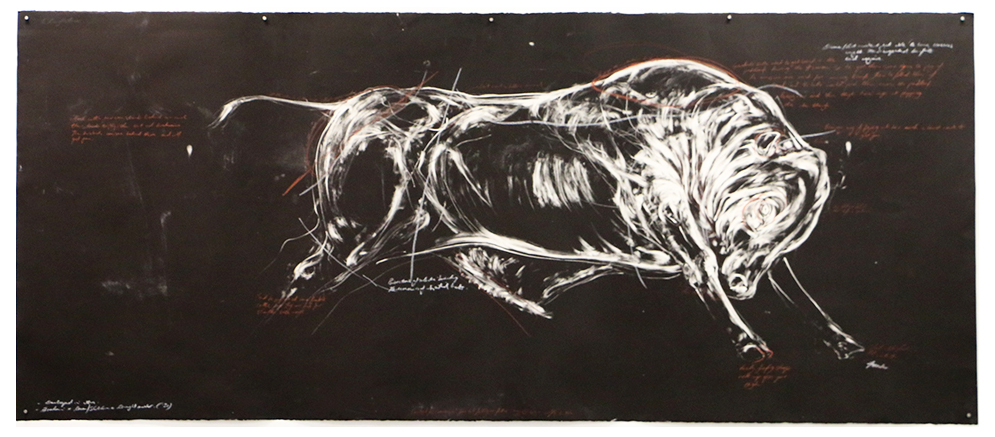 Study of a Drought Master.  2016. Monotype and conte on BFK Paper. 250 x 120 cm. SOLD: Perth, Australia.