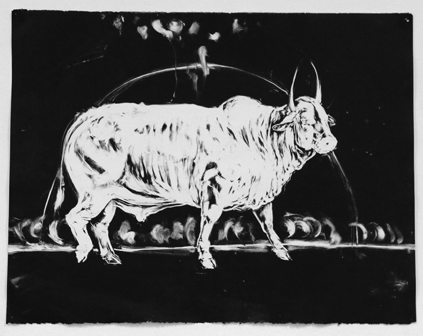 Bull Sketch . 2016. Monotype on Canson paper. 60 x 84 CM. AVAILABLE.