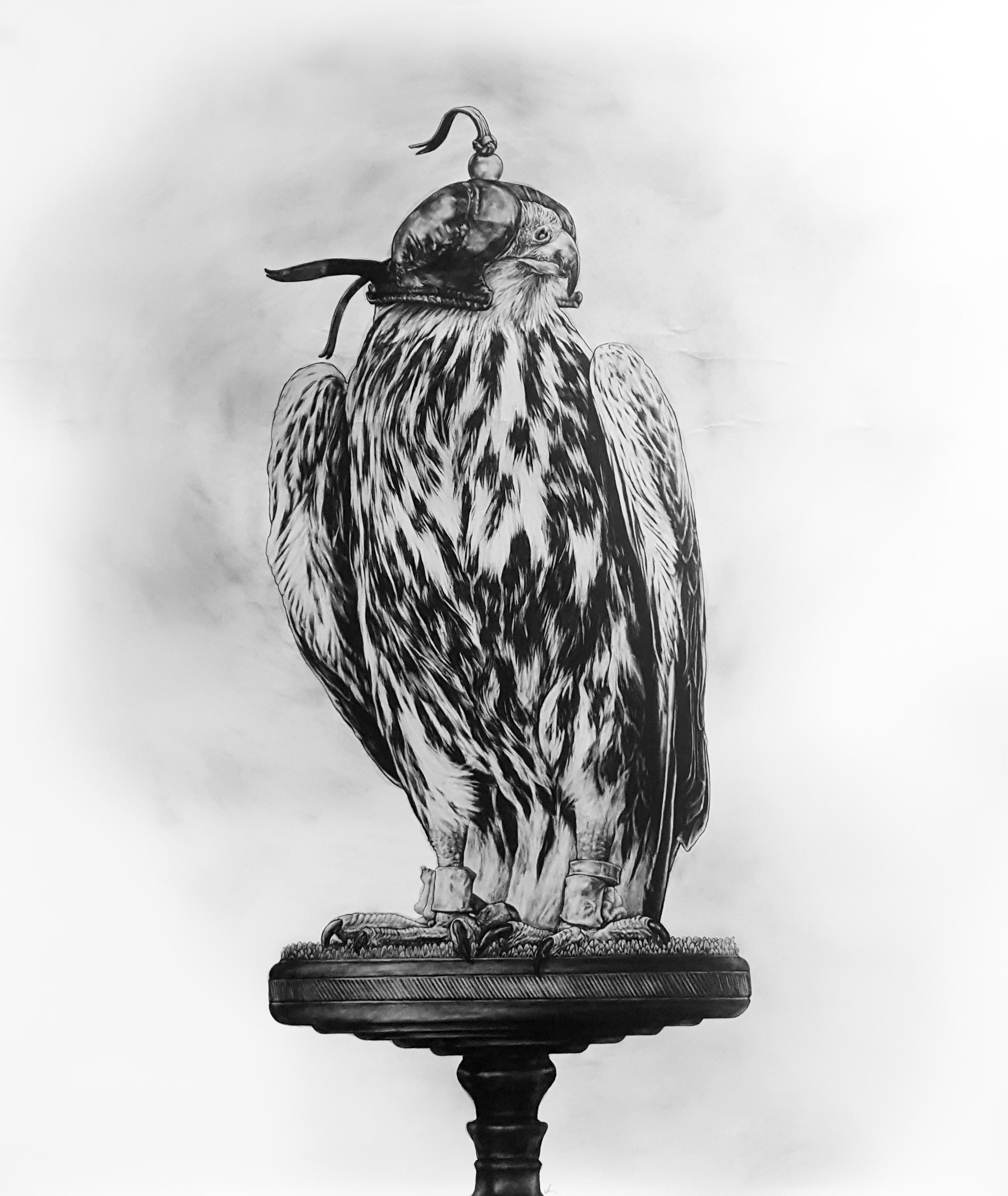 Hooded Falcon. 2017-18. Graphite on 300GSM Fabriano Artistico Paper (140 x 120cm) SOLD
