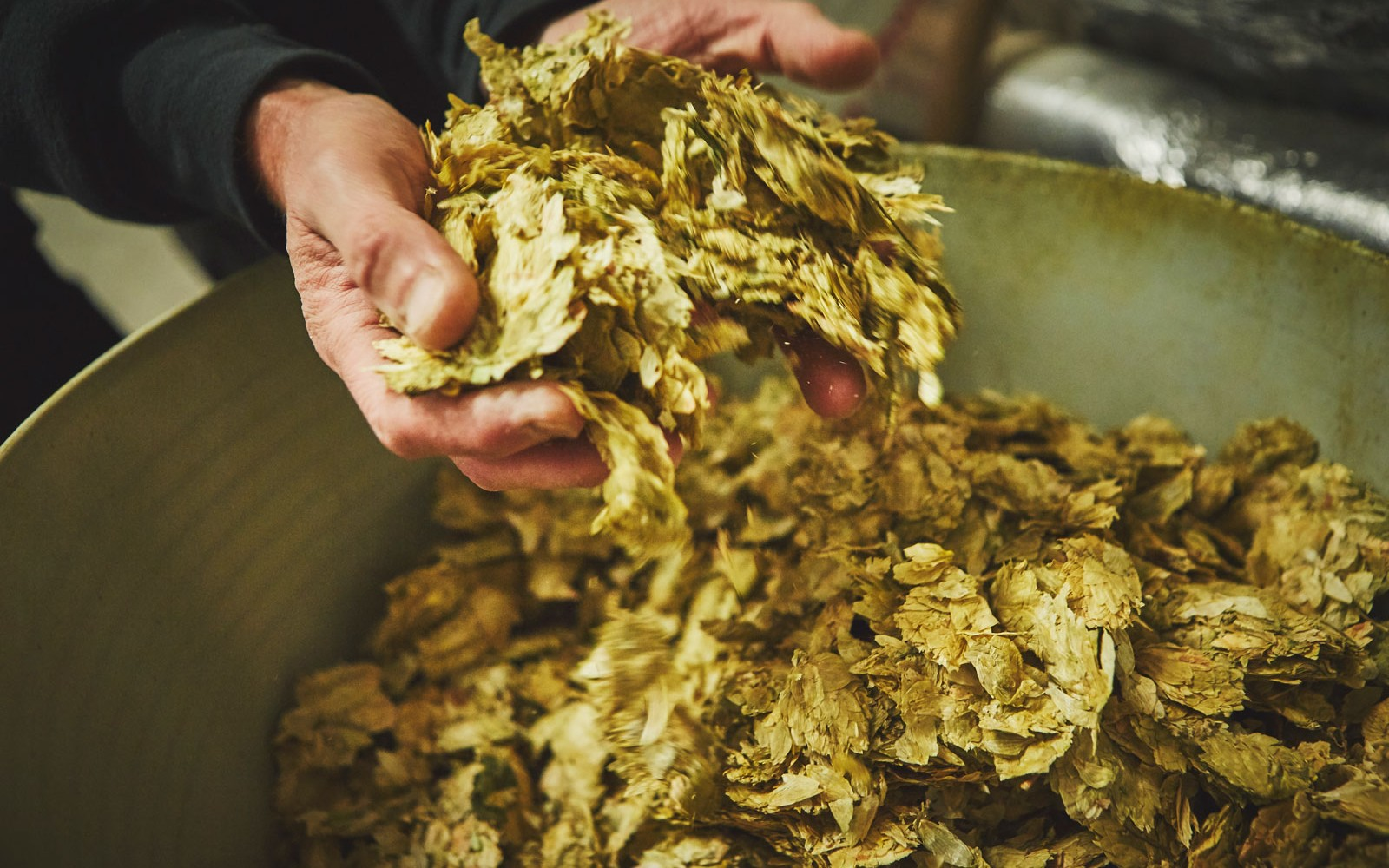 hops-in-hands-skinners-brewery-1600x1000-c-default.jpg