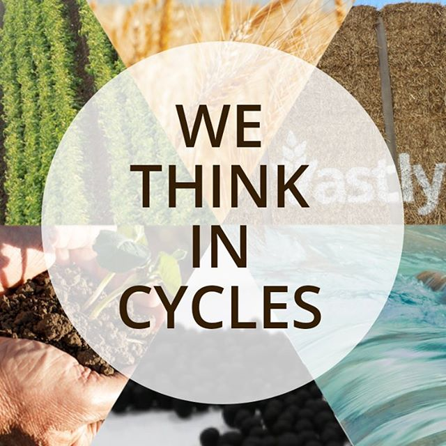 Products by Vastly from Plants, for Plants #thinkvastly #fertilizer #fulvicacid #sustainable 👉learn more Vastly.com @thinkvastly #linkinbio