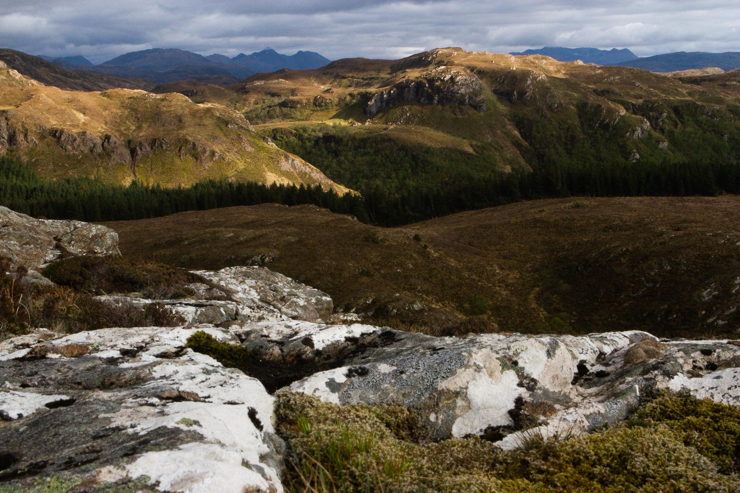 190423_Scotland-2281.jpg