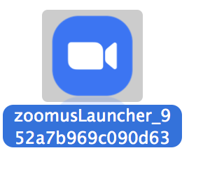 Zoom Launcher.png