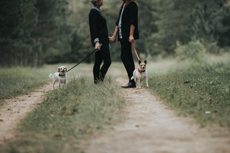 Brisbane Lifestyle Wedding Photographer | Engagement Photography-2.jpg