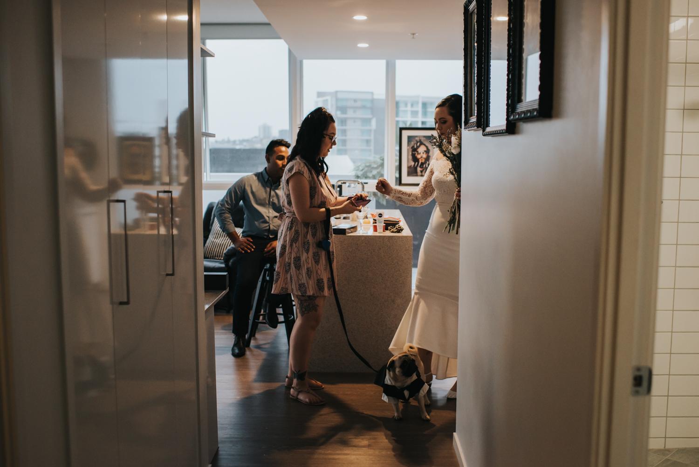 Brisbane Elopement | Wedding Photography-8.jpg