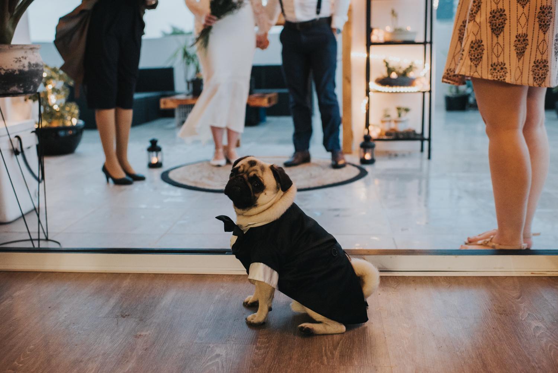 Brisbane Elopement | Wedding Photography-40.jpg