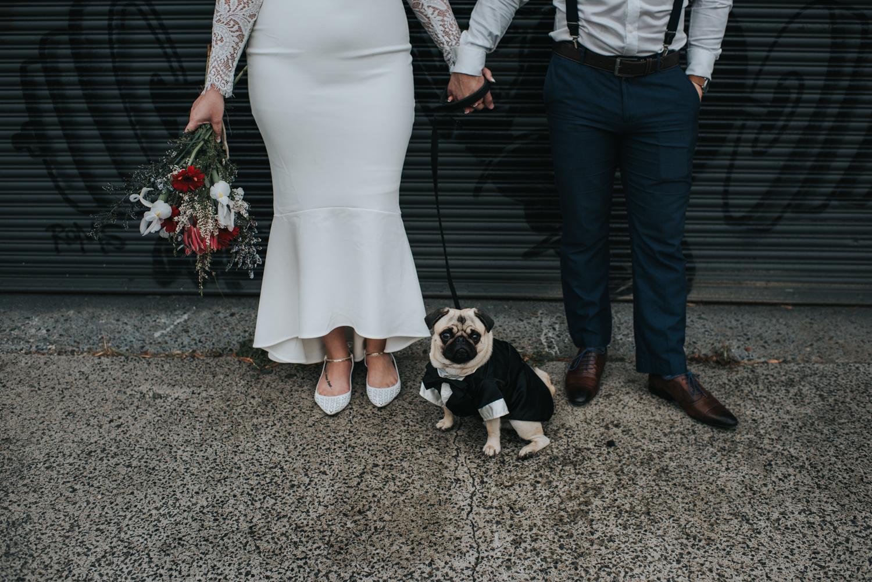 Brisbane Elopement | Wedding Photography-18.jpg