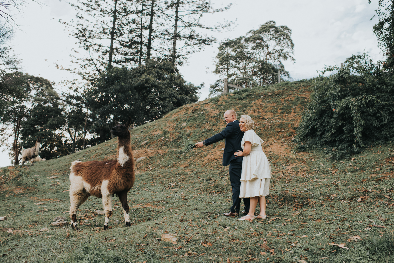 Brisbane Wedding Photographer | Mt Mee Wedding-56.jpg