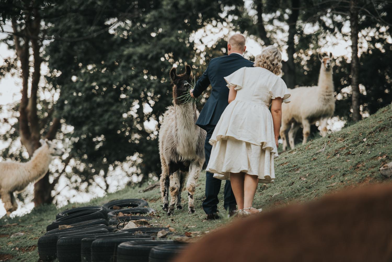Brisbane Wedding Photographer | Mt Mee Wedding-57.jpg