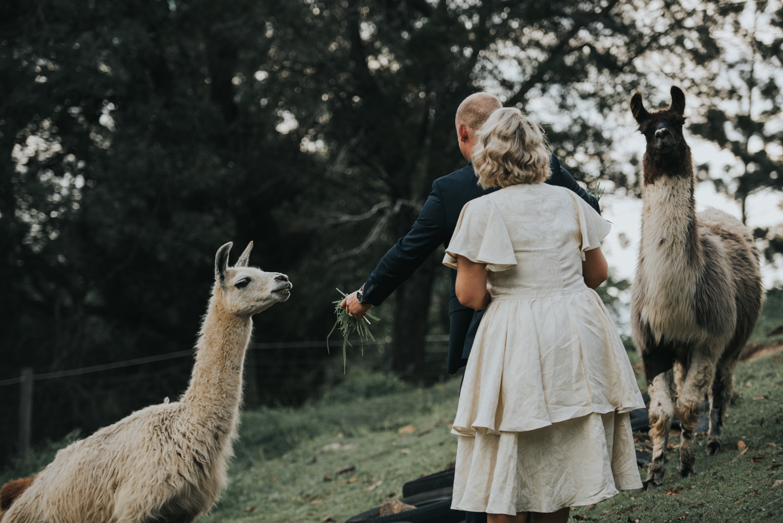 Brisbane Wedding Photographer | Mt Mee Wedding-58.jpg