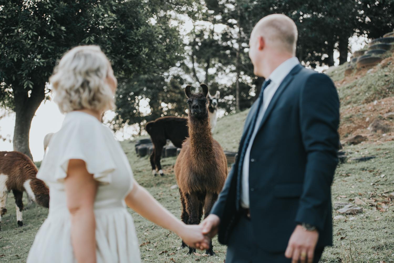 Brisbane Wedding Photographer | Mt Mee Wedding-62.jpg
