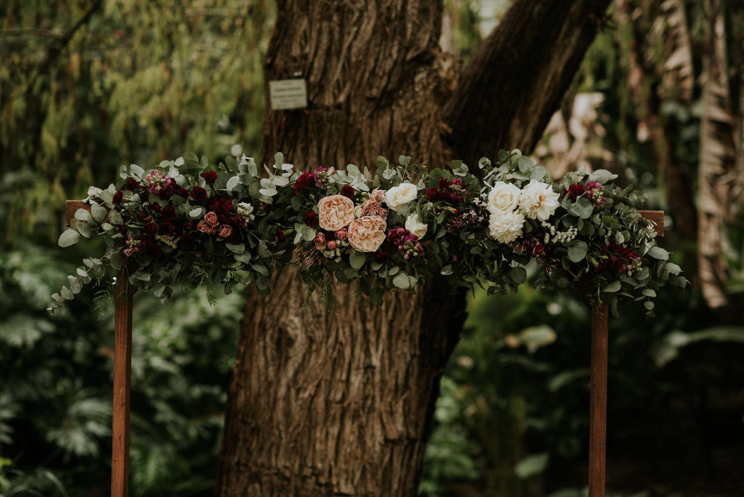 Brisbane Wedding Photographer | Engagement-Elopement Photography | Factory51-City Botantic Gardens Wedding-21.jpg