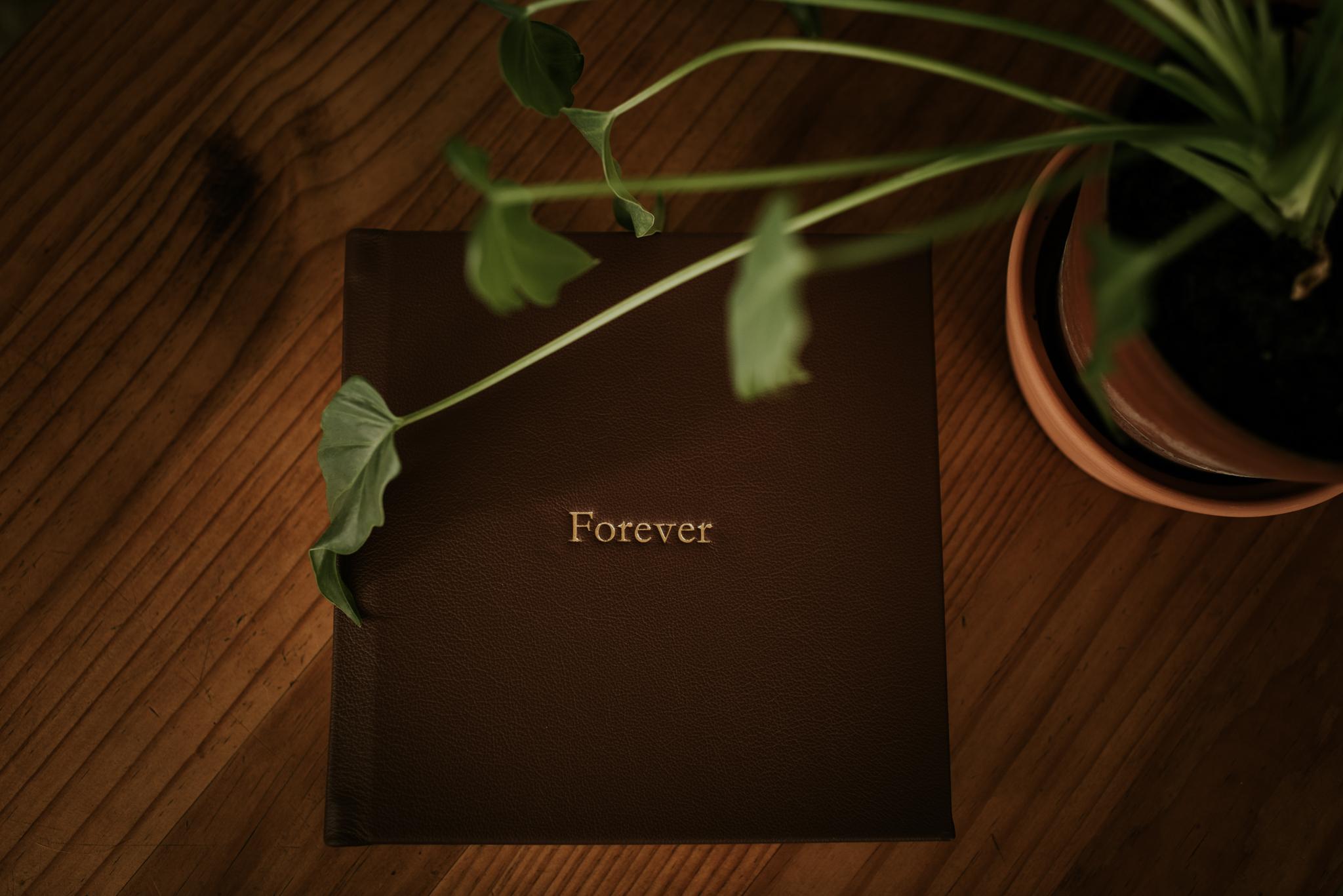 Wedding Album (8x8%22)_14Mar2019_social sharing-3.jpg