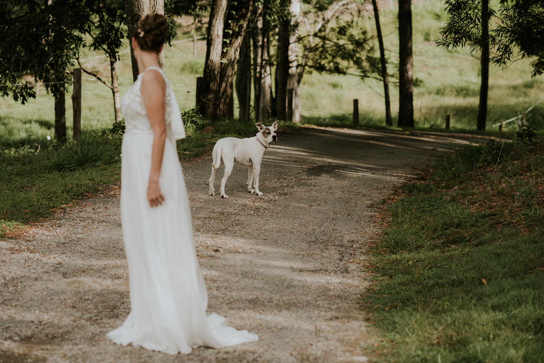 Brisbane Wedding Photographer | Bundaleer Rainforest Gardens Elopement Photography-24.jpg