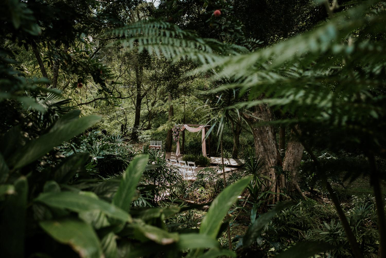 Brisbane Wedding Photographer   Bundaleer Rainforest Gardens-1.jpg