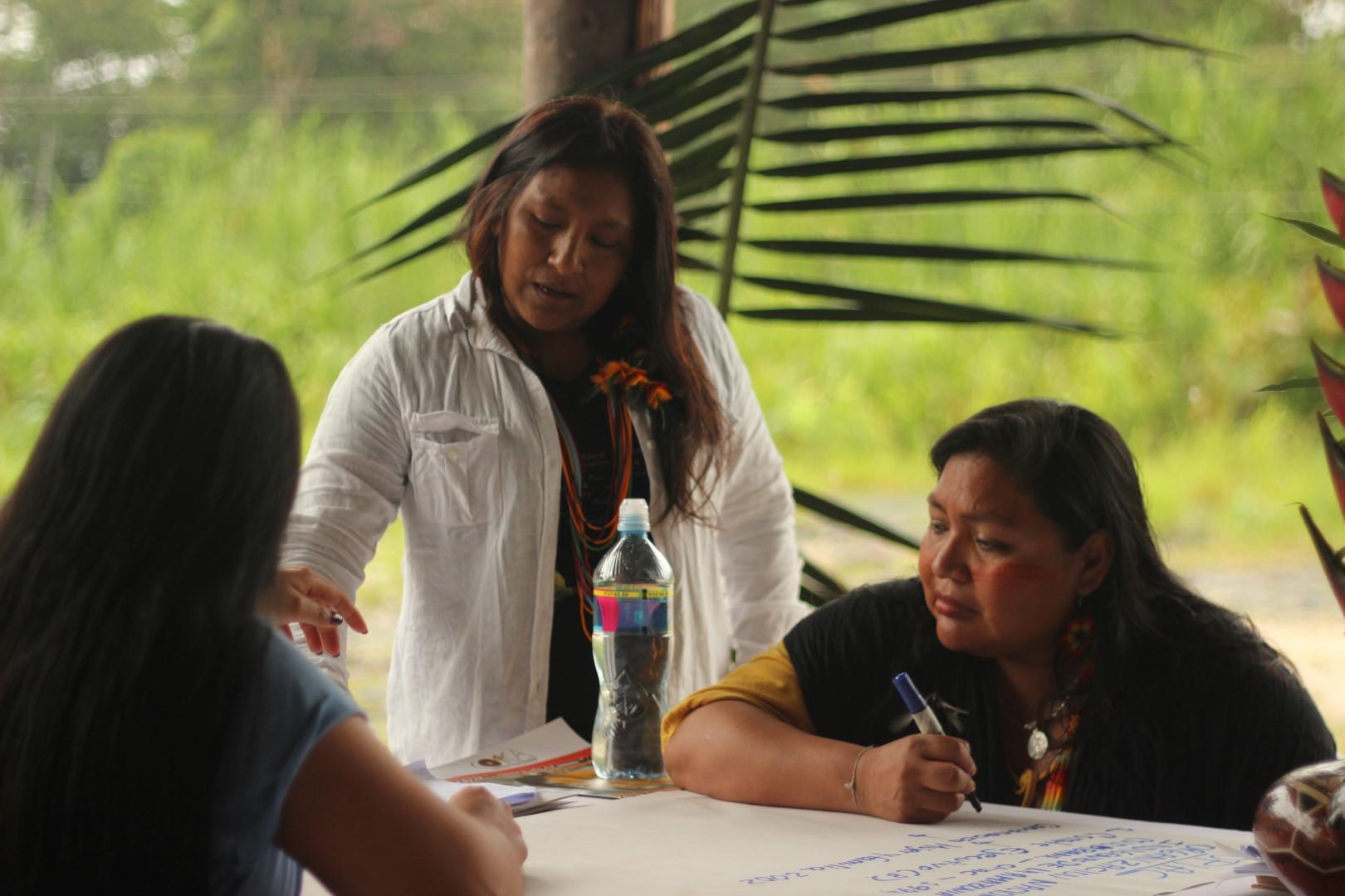 FOTO Reunicón consejo de género, mujeres y familia de COICA (2) (Large).JPG
