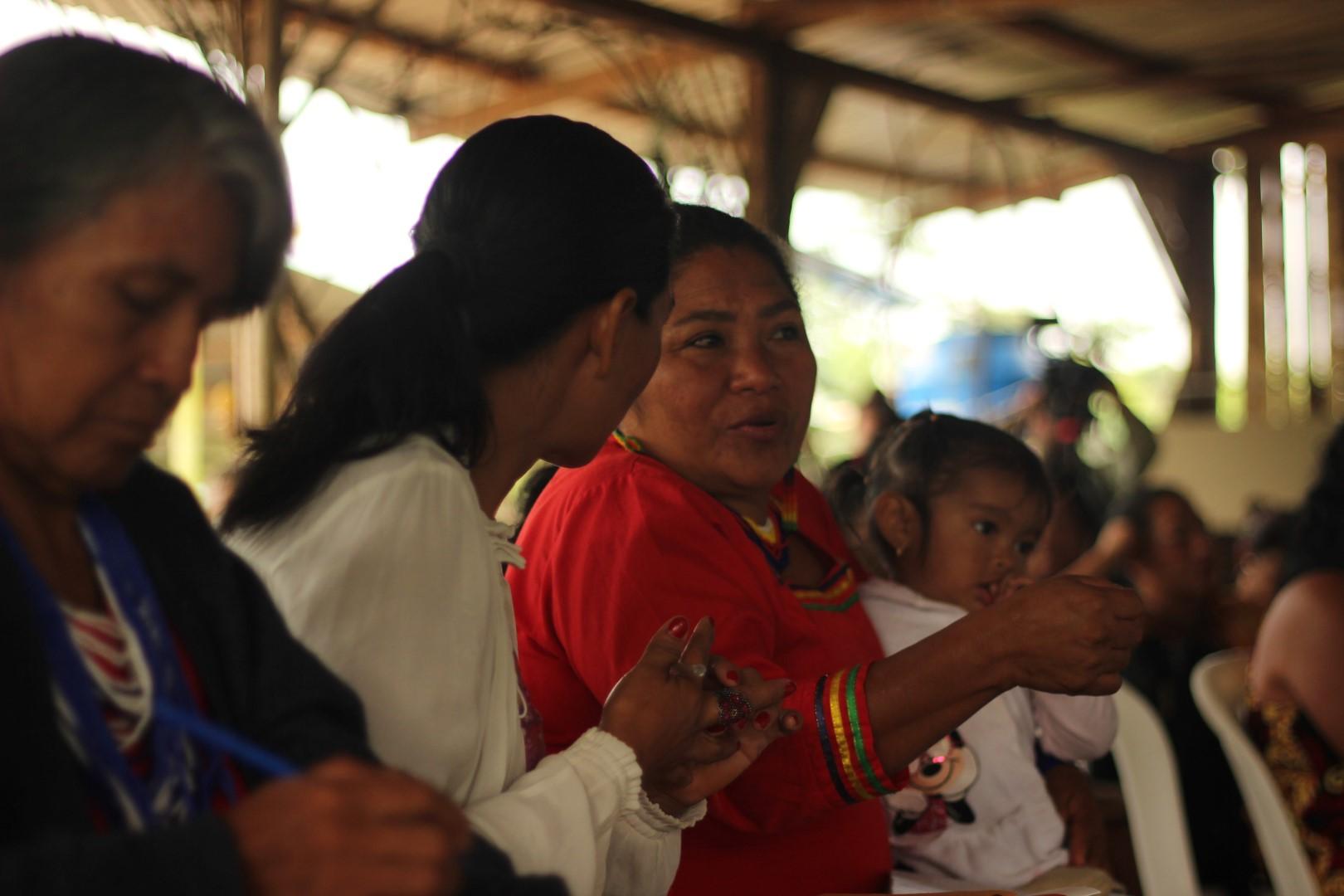 FOTO Reunicón consejo de género, mujeres y familia de COICA (7) (Large).JPG