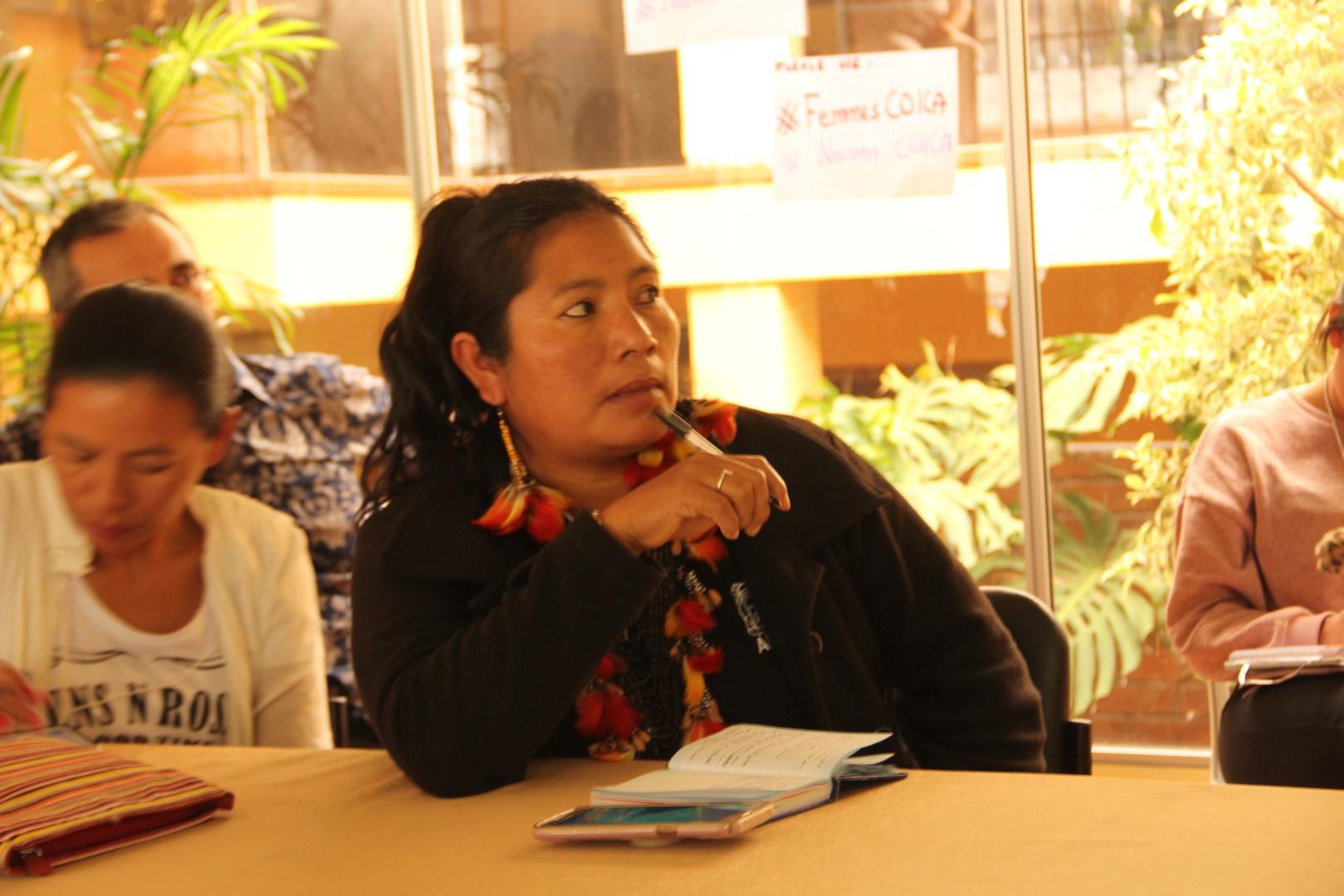 FOTO Reunicón consejo de género, mujeres y familia de COICA (14) (Large).JPG
