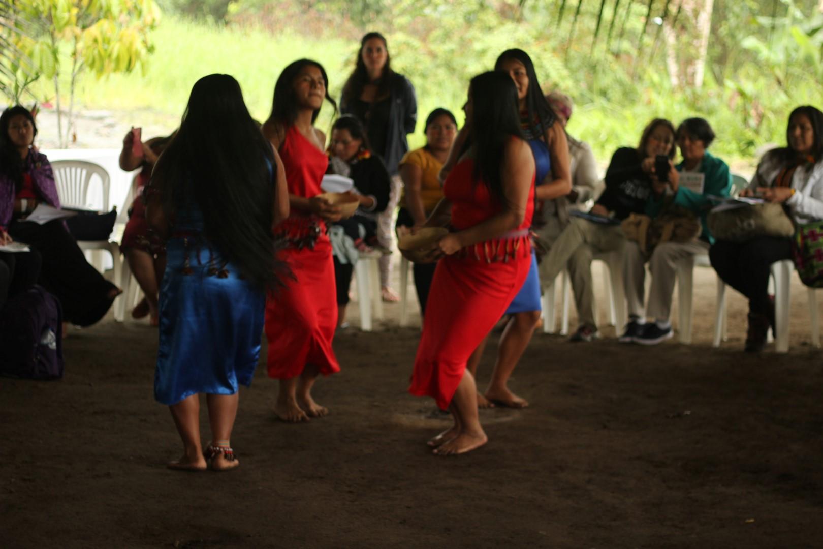 FOTO Reunicón consejo de género, mujeres y familia de COICA (19) (Large).JPG