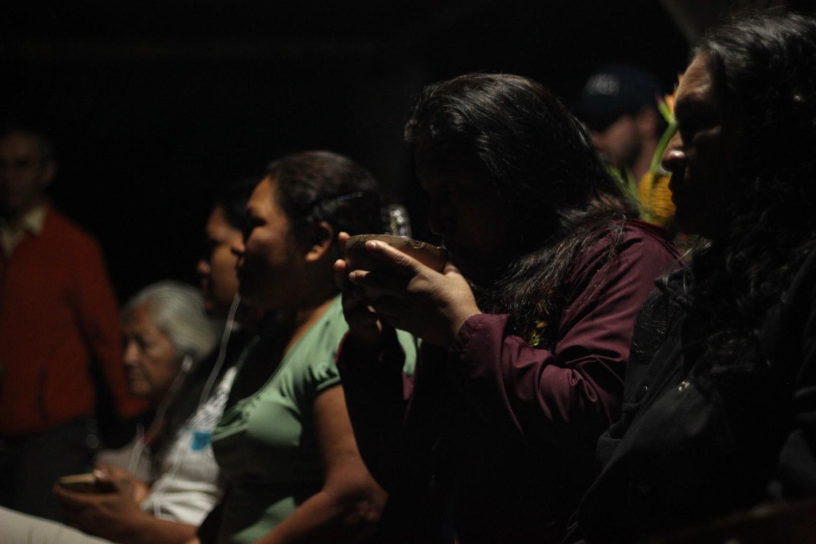 FOTO Reunicón consejo de género, mujeres y familia de COICA (28) (Large).JPG