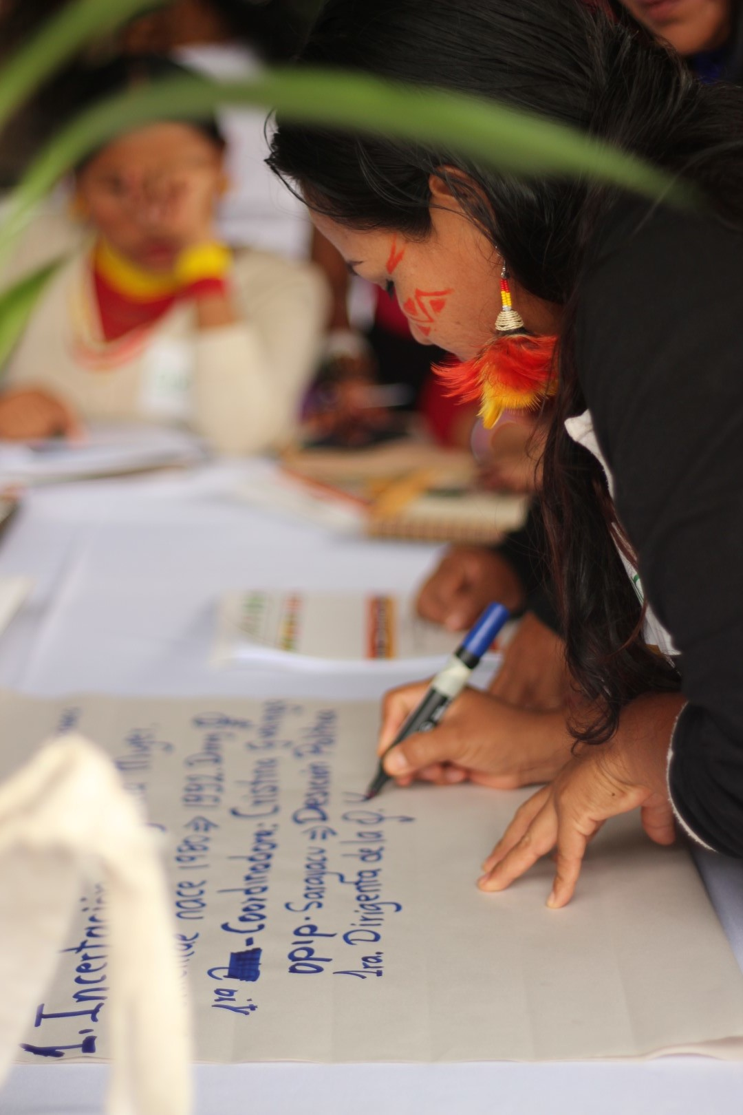 FOTO Reunicón consejo de género, mujeres y familia de COICA (33) (Large).JPG