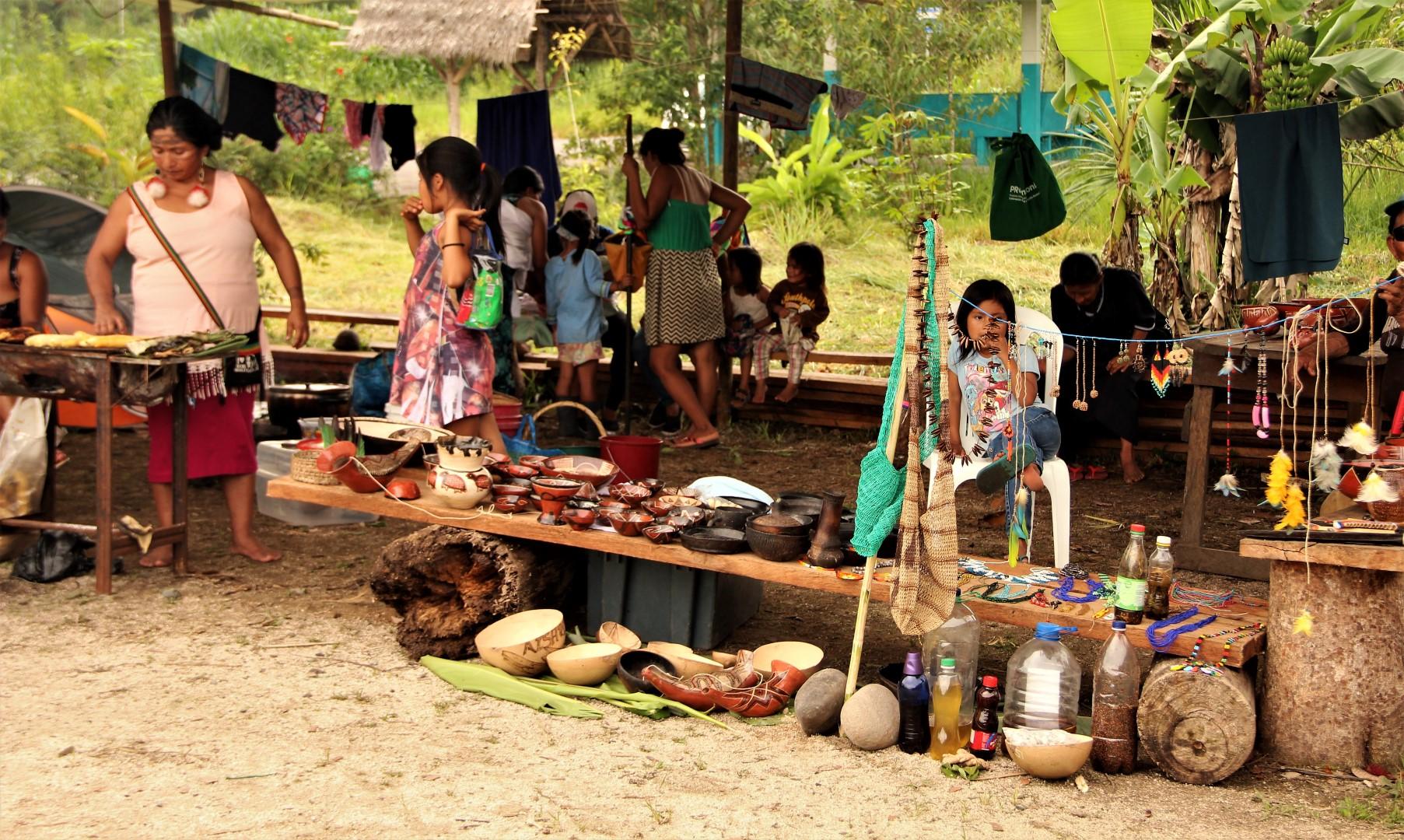 FOTO Reunicón consejo de género, mujeres y familia de COICA (53) (Large).JPG
