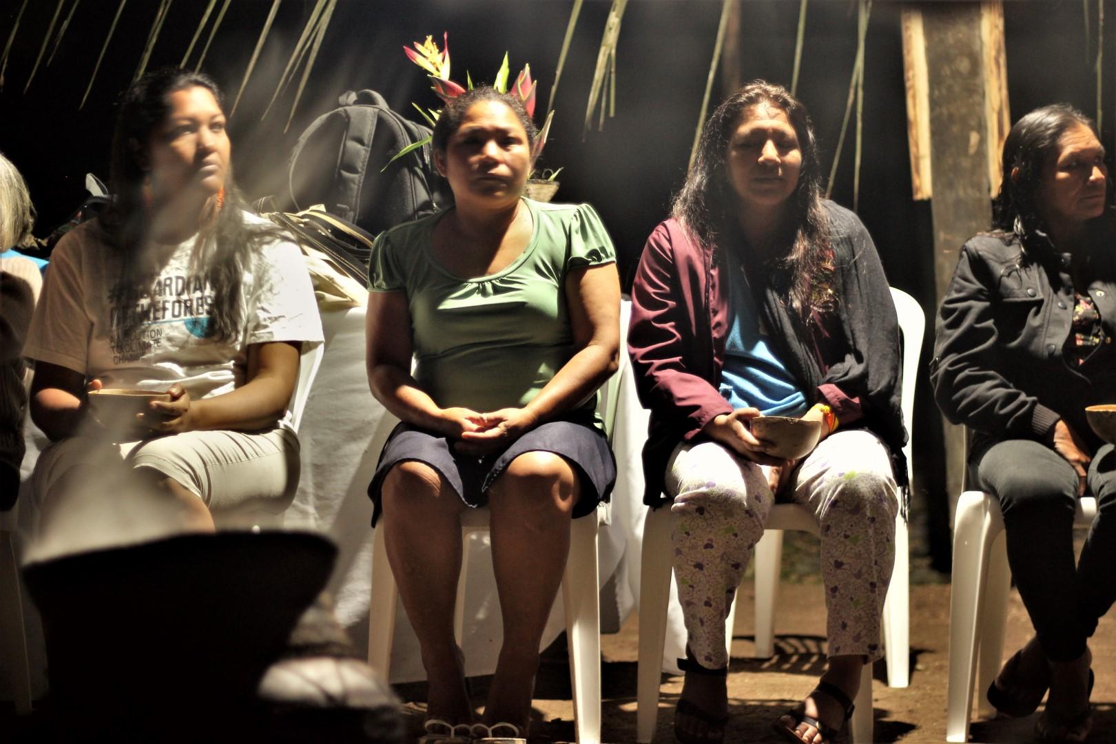 FOTO Reunicón consejo de género, mujeres y familia de COICA (66) (Large).JPG