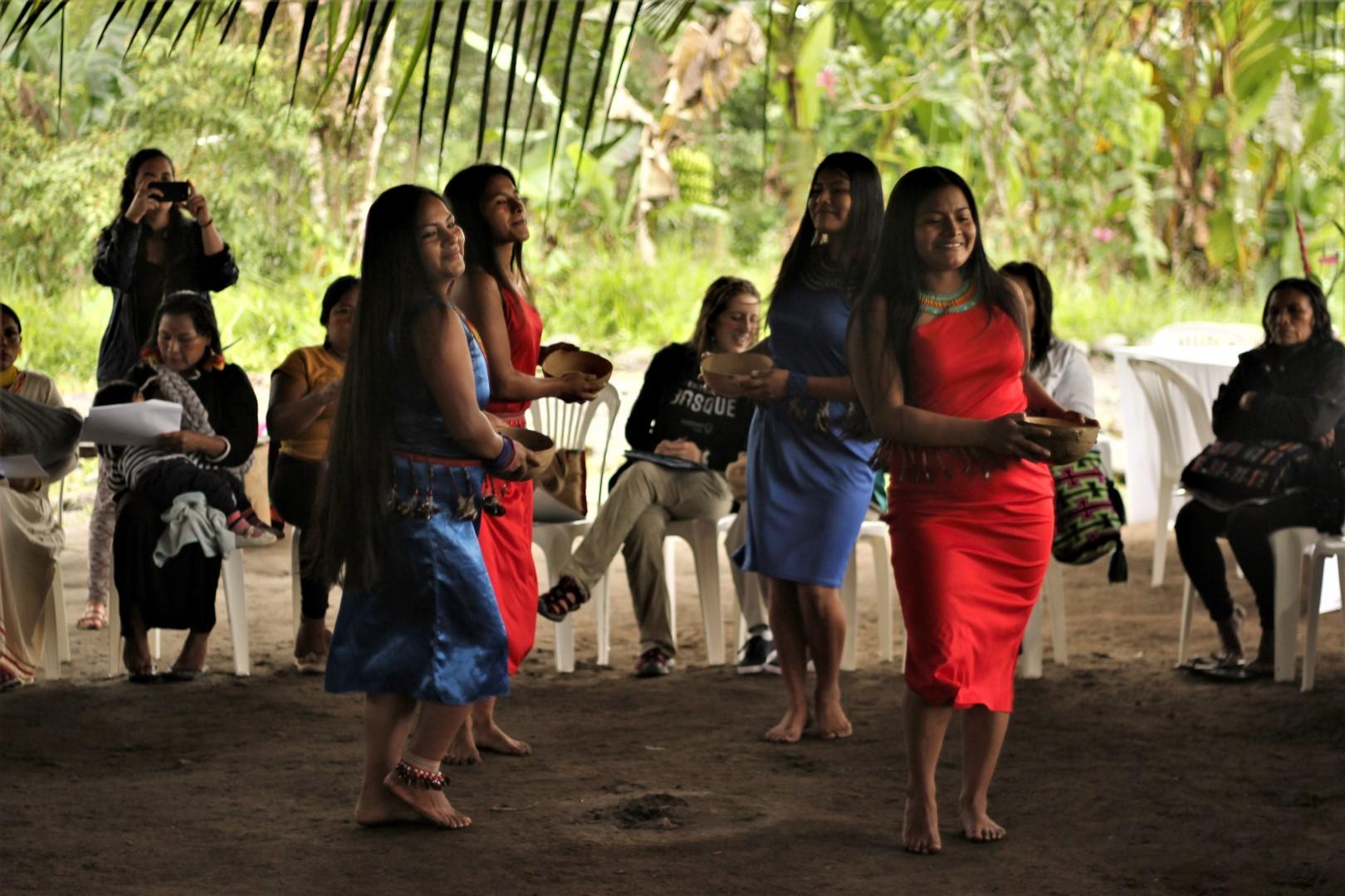 FOTO Reunicón consejo de género, mujeres y familia de COICA (70) (Large).JPG