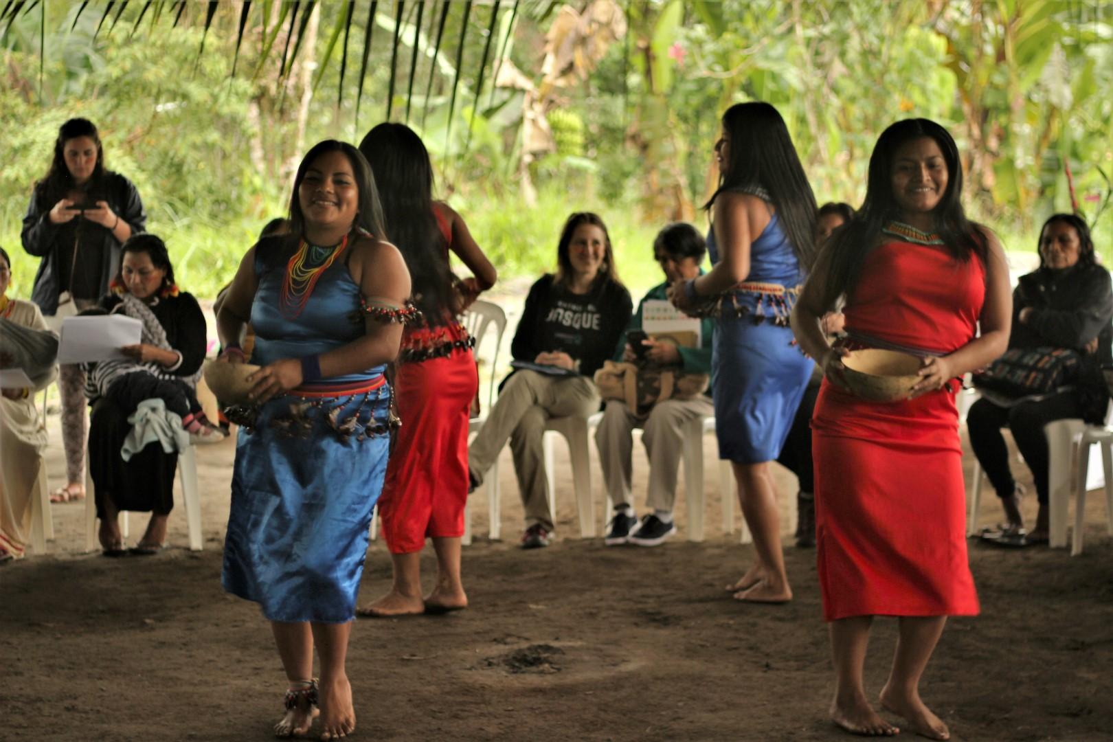 FOTO Reunicón consejo de género, mujeres y familia de COICA (74) (Large).JPG