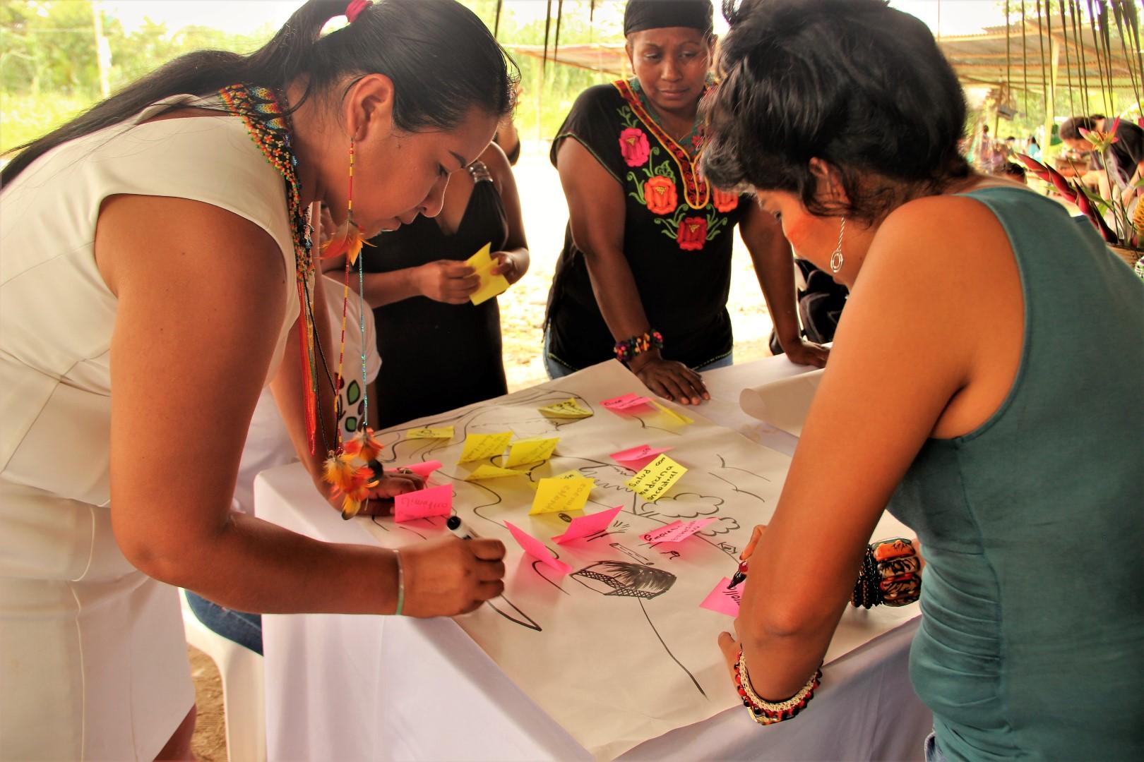 FOTO Reunicón consejo de género, mujeres y familia de COICA (89) (Large).JPG