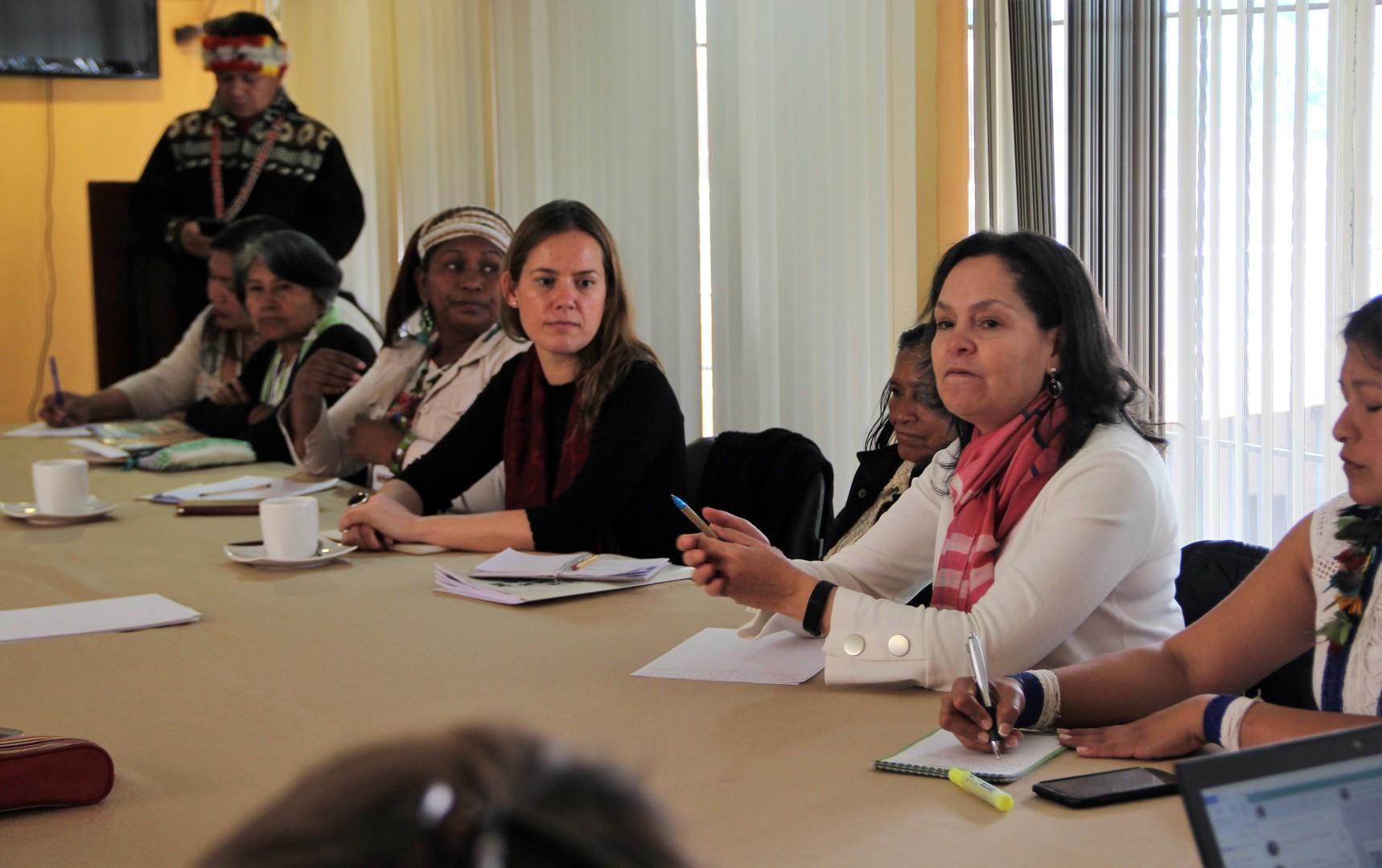 FOTO Reunicón consejo de género, mujeres y familia de COICA (104) (Large).JPG