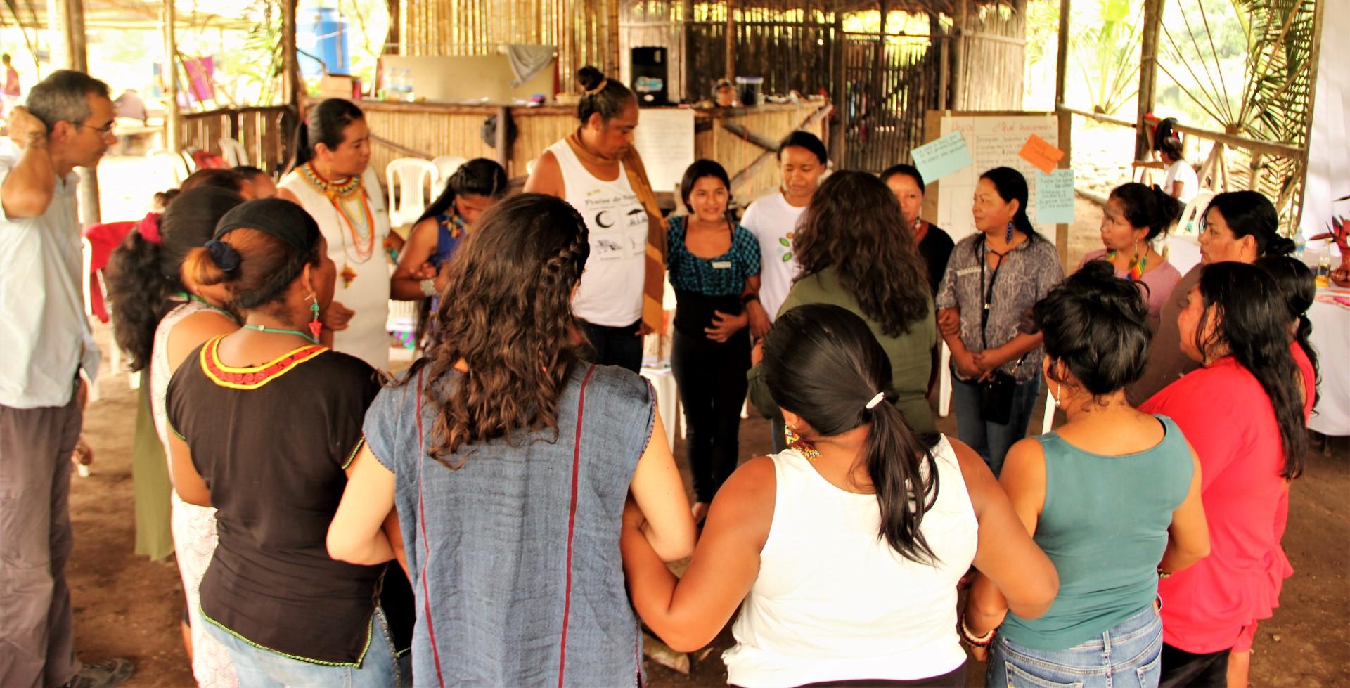 FOTO Reunicón consejo de género, mujeres y familia de COICA (106) (Large).JPG