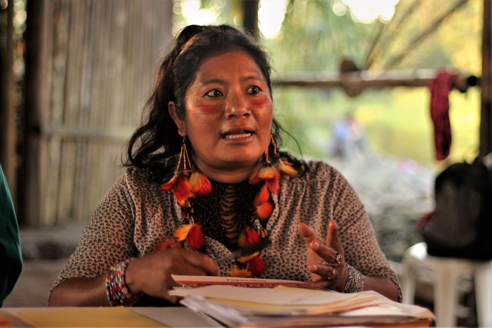 FOTO Reunicón consejo de género, mujeres y familia de COICA (129) (Large).JPG