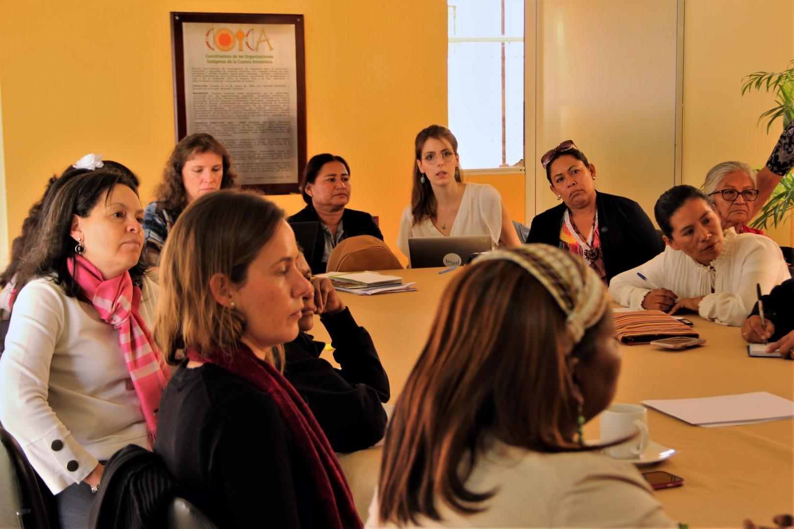 FOTO Reunicón consejo de género, mujeres y familia de COICA (139) (Large).JPG