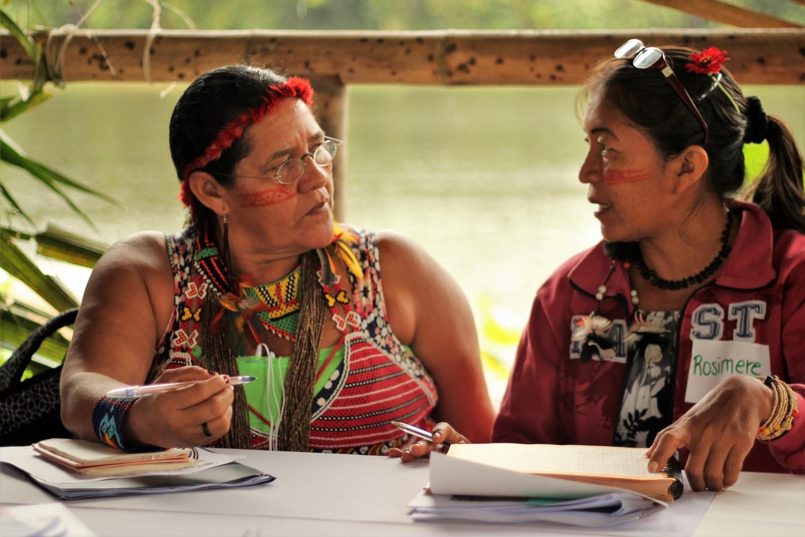 FOTO Reunicón consejo de género, mujeres y familia de COICA (131) (Large).JPG