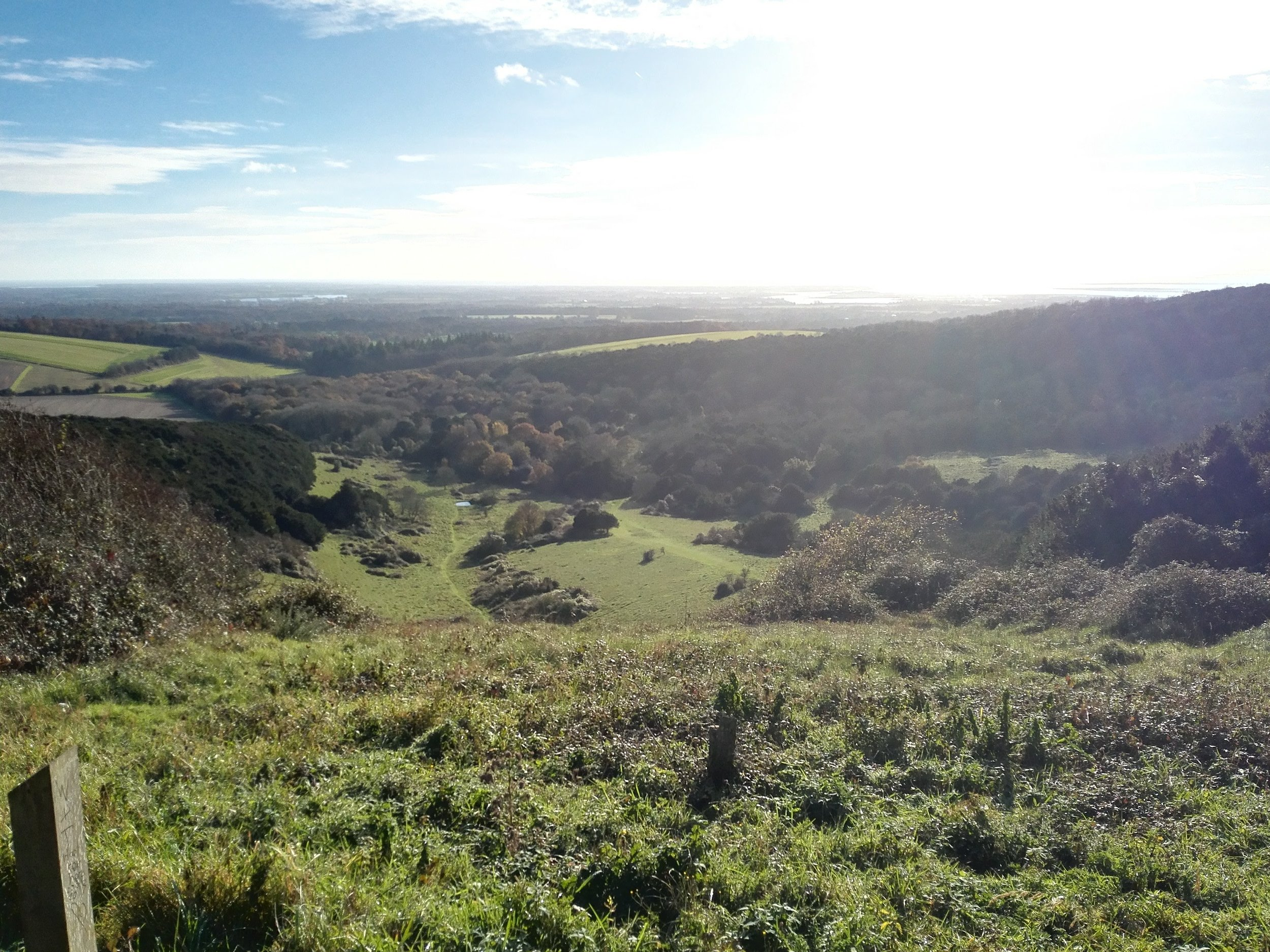 View heading up Bow Hill