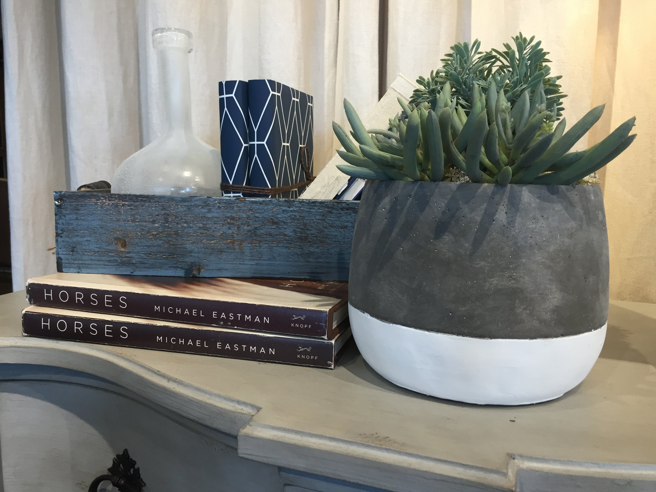 succulent and books.JPG